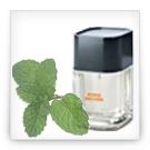 aromatisch-grüne Düfte